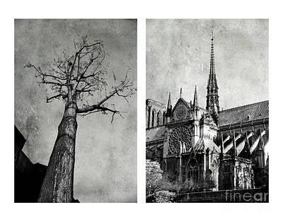 Notre Dame De Paris Poster by Elena Nosyreva