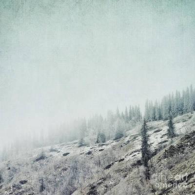 November Fog Poster