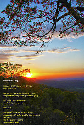 Poster featuring the photograph November Song by Mitch Cat