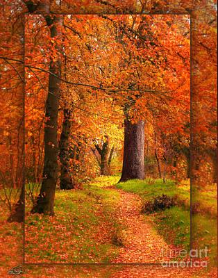November Wood Poster