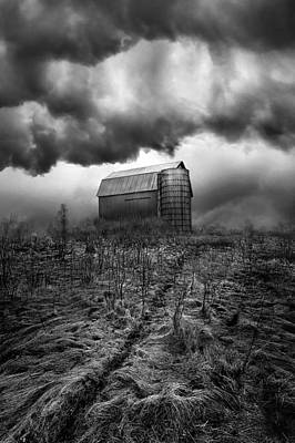 Nowhere To Hide Poster by Phil Koch
