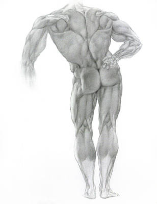 Poster featuring the drawing Nude 2 by Valeriy Mavlo