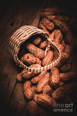 Nuts Still Life Food Photography Poster