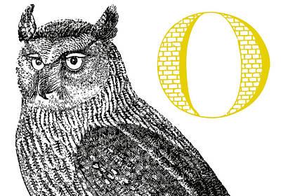 O Owl Poster