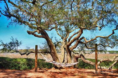 Oak And Hammock Poster by Deborah Benoit