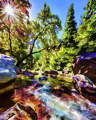 Oak Creek Sycamore Poster by ABeautifulSky Photography