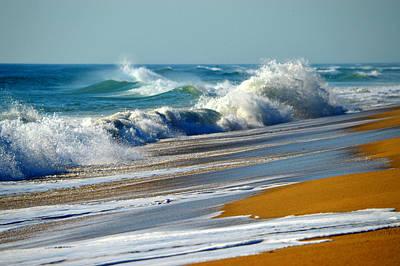 Ocean Delight Poster by Dianne Cowen