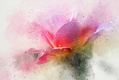 O'connor Rose Abstract Poster by Terry Davis