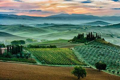 October Dawn In San Quirico D'orcia Poster by Adrian Popan