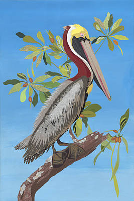 Ode To Audubon - Brown Pelican Poster by Jennifer Peck