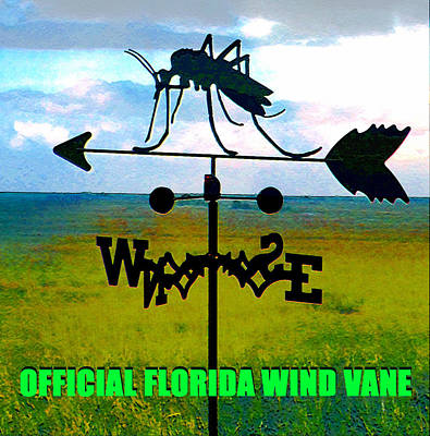 Poster featuring the digital art Official Florida Wind Vane by David Lee Thompson