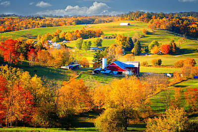 Ohio Amish Country Poster by Mary Timman