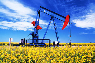 Oil Pumpjack And Canola Field, Arcola Poster by Dave Reede