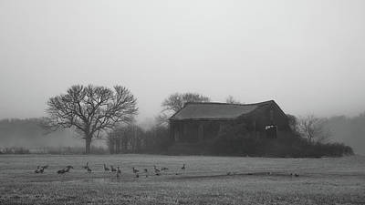 Poster featuring the photograph Old Barn In Fog - Black And White by Kirkodd Photography Of New England