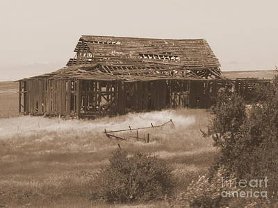 Old Barn In Oregon Poster