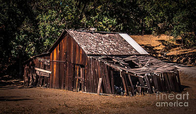 Old Barn River Road Sonoma County Poster