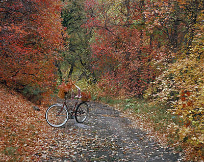 Old Bike In Autumn Poster by Leland D Howard