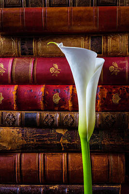 Old Books And Calla Lily Poster