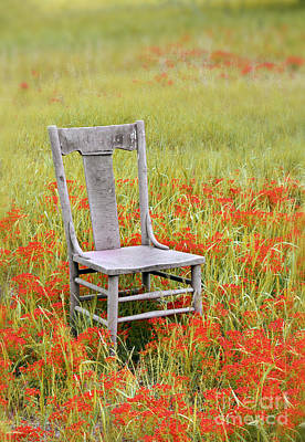 Old Chair In Wildflowers Poster by Jill Battaglia
