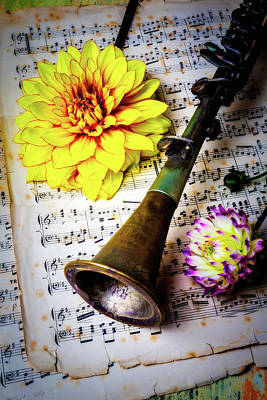 Old Clarinet And Dahlias Poster