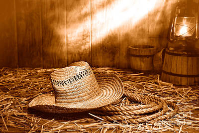 Old Farmer Hat And Rope - Sepia Poster