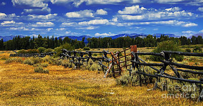 Old Fence Line Poster by Robert Bales