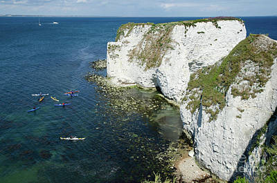 Old Harry Rocks Sea Kayak Tour Visiting The White Jurassic Cliffs On The Dorset Coast England Uk Poster by Andy Smy