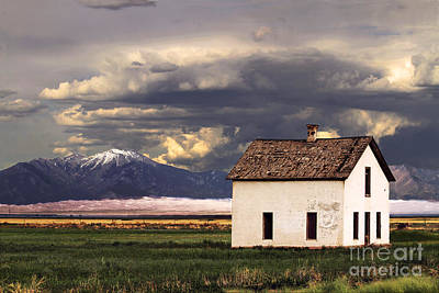 Old House At The Great Sand Dunes Poster by Catherine Sherman