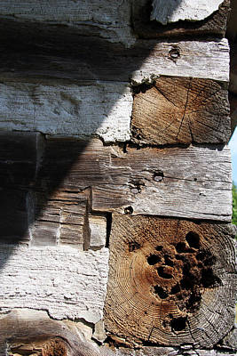 Old Log House Detail Poster by Joanne Coyle