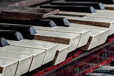 Poster featuring the photograph Old Organ Keys by Michal Boubin
