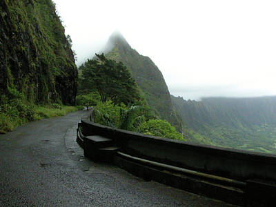 Poster featuring the photograph Old Pali Road, Oahu, Hawaii by Mark Czerniec