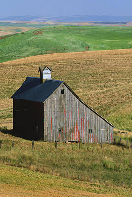 Old Palouse Barn Poster by Sandra Bronstein