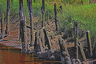 Old Pier Pilings  Poster by Garry Gay