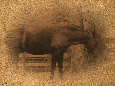 Old West Horse Poster by Debra     Vatalaro