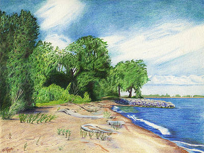 Poster featuring the drawing Old Woman Creek - Huron Ohio by Shawna Rowe