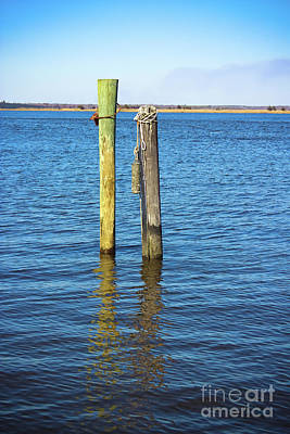 Poster featuring the photograph Old Wood Pilings In Blue Water by Colleen Kammerer