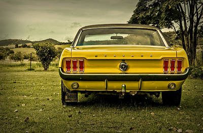 Old Yellow Mustang Rear View In Field Poster by Design Turnpike