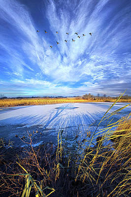 Poster featuring the photograph On Frozen Pond by Phil Koch