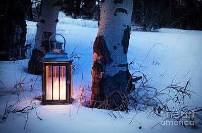 Poster featuring the photograph On This Winter's Night... by The Forests Edge Photography - Diane Sandoval
