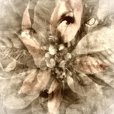 Once Upon Grandmom's Poinsettia Poster