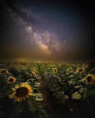 Poster featuring the photograph One In A Million  by Aaron J Groen