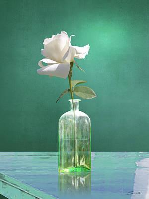 One White Rose Poster