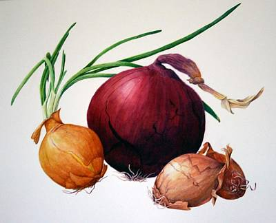 Onion Medley Poster by Margit Sampogna