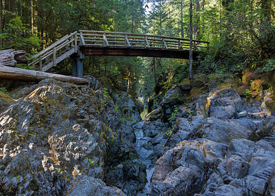 Opal Creek Bridge Poster