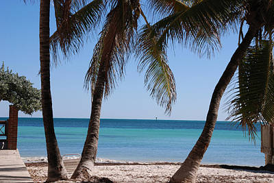 Open Beach View Poster