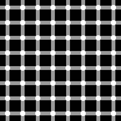 Optical Illusion The Grid Poster