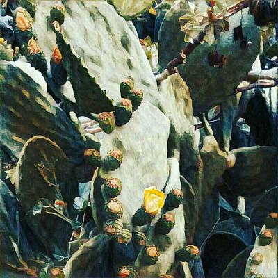 Opuntia Ficus Poster