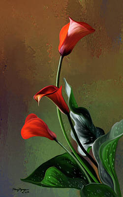Orange Calla Lily Poster by Thanh Thuy Nguyen