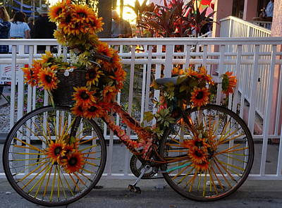 Orange Flower Bike Poster by Laurie Perry