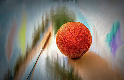 Poster featuring the photograph Orange #g4 by Leif Sohlman